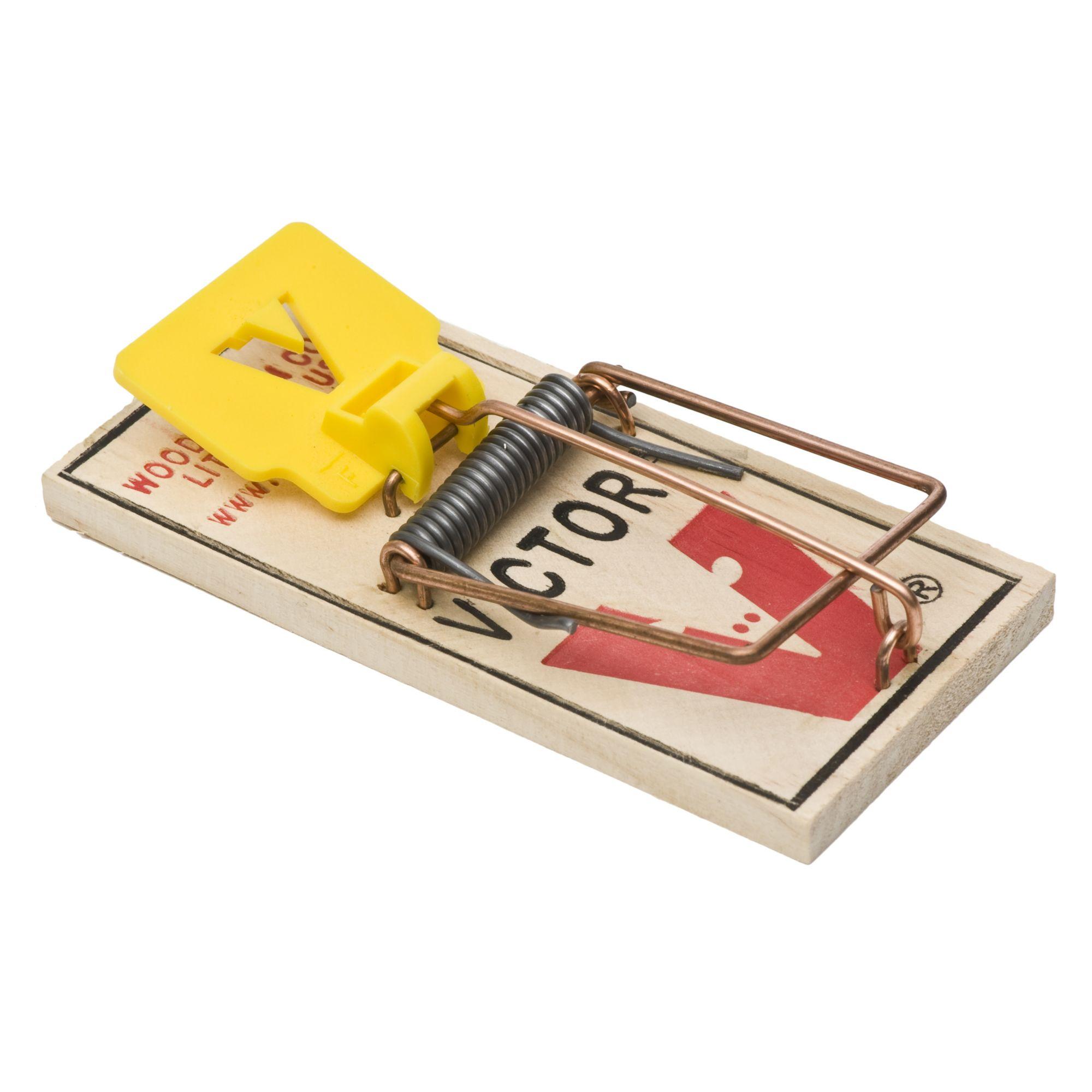 victor easy set mouse snap trap 72 pack model bm325. Black Bedroom Furniture Sets. Home Design Ideas