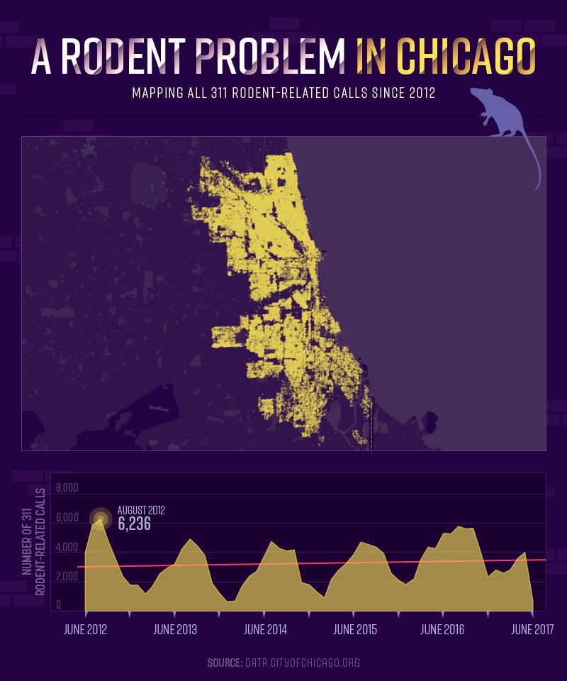 A Rodent Problem in Chicago