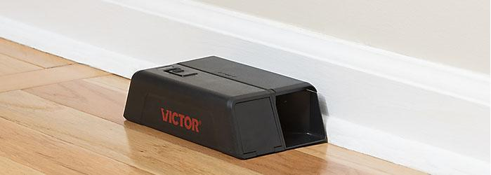 FAQ's: Best rat trap? Best rat bait? Expert answers from Victor®