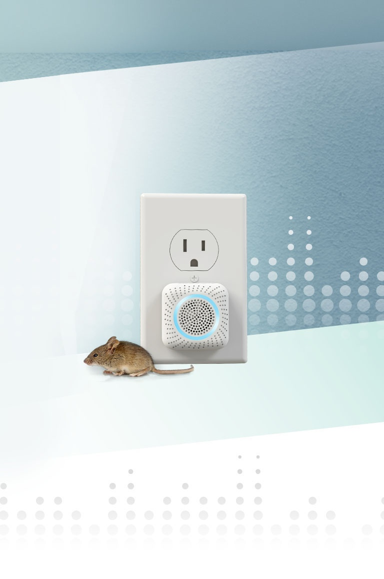 How to Repel Mice and Rats