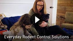 Eveeryday Rodent Control Solutions
