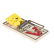 Victor® Easy Set® Mouse Trap - 24 Traps