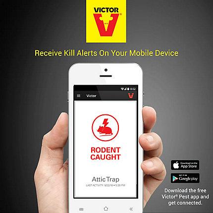 Victor® Smart-Kill™ Wi-Fi Electronic Rat Trap | M2 | victorpest com