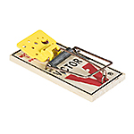 Easy Set Mouse Trap