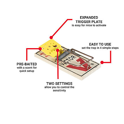 Victor® Easy Set® Mouse Snap Trap - 72 pack | Model BM325