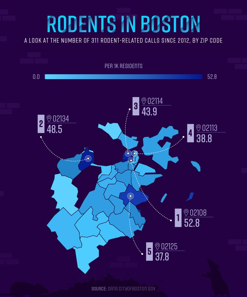 Rodents in Boston